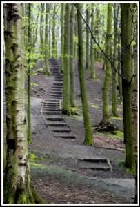 Foto: steps av SFB579 :), http://flic.kr/p/4MfuGS