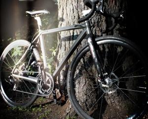 cyclocross westfahl