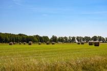 Jordbrukslandskap med mat för vintern
